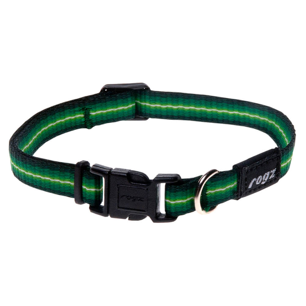 Rogz Pavement Special Midget Dog Collar