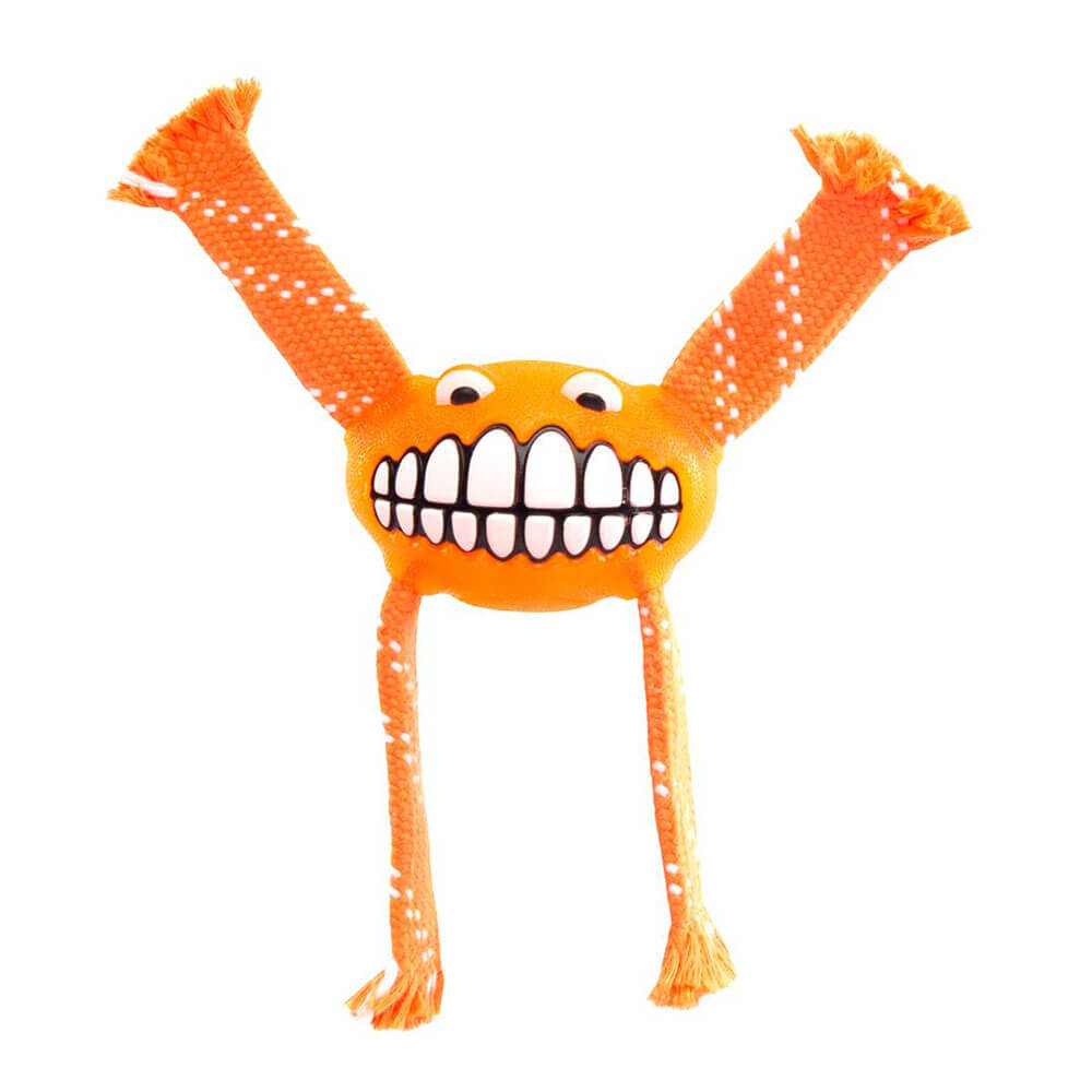 Rogz Flossy Grinz Oral Care Dog Toy