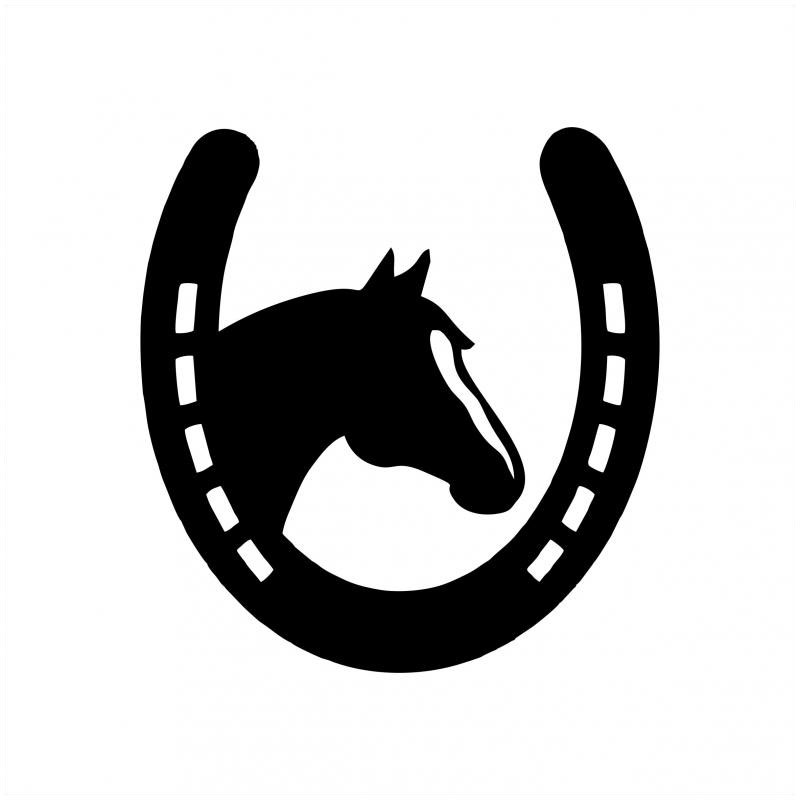 Best Buddy - HorseShoe Horse Sticker